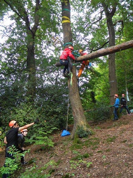 Befestigung des ersten Baumes in der Höhe
